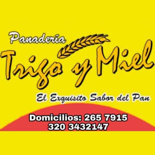 3990 TRIGO Y MIEL PIEDRA PINTADA